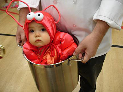 Baby Lobster